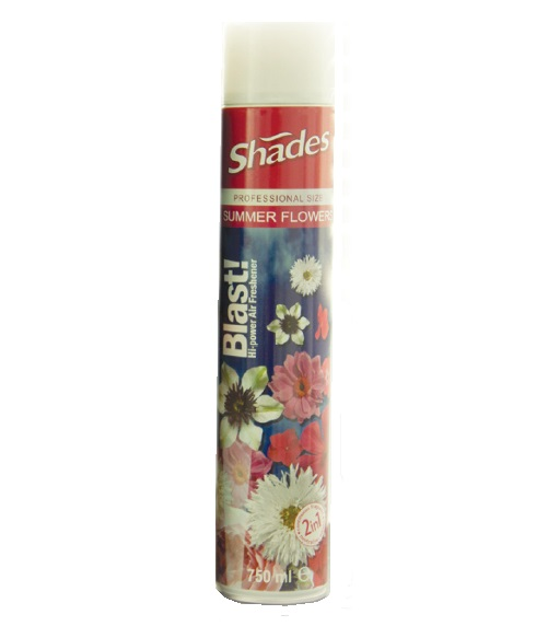 Blast! Hi Power Air Freshener 750ml SUMMER FLOWERS (single)